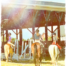 friends betterdays summer horses trailrides missthis photography edits