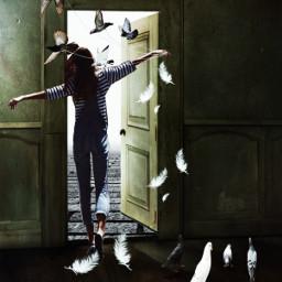 freedoom pandemic door street girl birds room madewithpicsart picsartstickers picsartefects editedbyme freetoedit