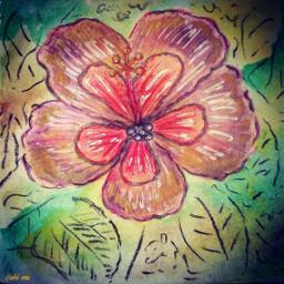 drawing draw flower sketch