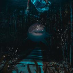 interesting sea ocean womansticker sharksticker seeweed doubleexposure photoblending underwater sealion imagination fantasy picsart picsartedit remixed