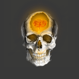 atombomb nuclearbomb hydrogenbomb nuclearexplosion skull brokenbone glow rays freetoedit
