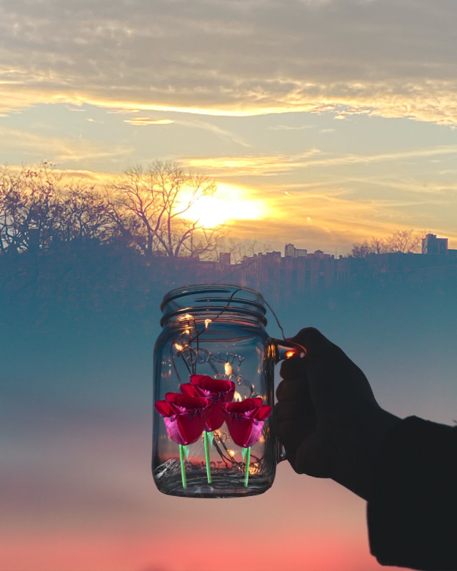 #sunshine #rosestickers 😲🌹☀️ #ircmagicfairyjar #magicfairyjar #freetoedit  https://picsart.com/i/357486196077201?challenge_id=608bbfa78ef5d800cb0fad69