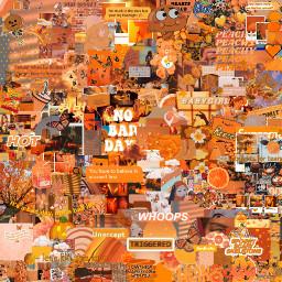 asthetic aesthetic orange orangeaesthetic orangeasthetic collage aestheticcollage astheticcollage aestheticollage astheticollage ornge orangecollage aestheticedit collageedit collageaesthetic backround emojis aestheticcollageedit edit orangeaestheticbackground orangeastheticbackround aestheticeditorange orangebutterflies butterflies aestheticbutterflies freetoedit