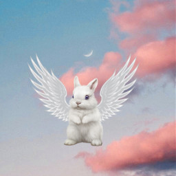 mix bunny angel sky craftingclub freetoedit