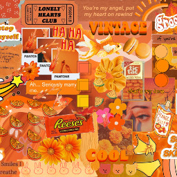 orange orangestickers stickers orangesticker aesthetic collage orangesesthetic orangebackground interesting myedit myoriginaledit freetoedit picsart