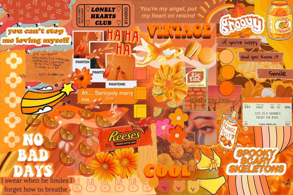 #orange #orangestickers #stickers #orangesticker #aesthetic #collage #orangesesthetic #orangebackground #interesting #myedit #myoriginaledit #freetoedit #picsart @freetoedit @picsart