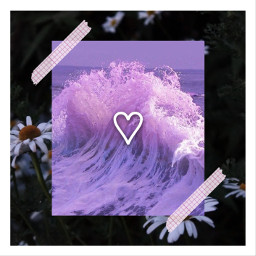 ccpurpleaesthetic purpleaesthetic freetoedit