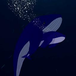 whales whalecalf bluewhale love ocean underwater family whanau freetoedit