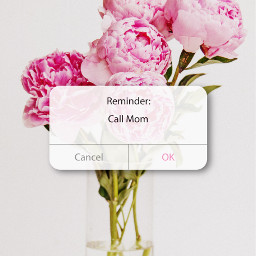 mothersday happymothersday 母の日 picsart picsartjapan