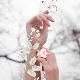 picsart fantasy love nature beautifulwork criativ girl flowers interesting myedit remixit remixed freetoedit
