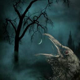 freetoedit darkart darkness creepy crow wildandfree madewithpicsart myedit