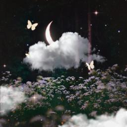 moon clouds cloud dark moonlight butterfly butterflies flower flowers magic surreal surrealism makeawesome heypicsart madewithpicsart picsart papicks tumblr shine light freetoedit