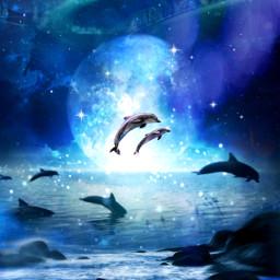myedit myart moon dauphins auroraborealis nightsky superposition prism prismeffect createdbyme makewithpicsart freetoedit