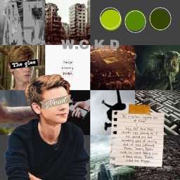 aesthetic collage newt thomasbrodiesangster tmr themazerunner thescorchtrials thedeathcure pleasetommyplease page250 sad green themaze guns subjecta5 denver jumpoffthewall wallswithivy viens crank griever grey books movies fandoms freetoedit