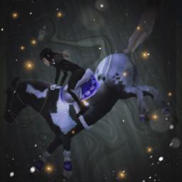 horseridingtales
