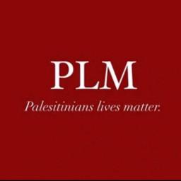 freetoedit remixit müslimslivesmatter palestinelivematter save_palestine