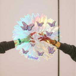 freetoedit remixit picsart ircreachinghands reachinghands