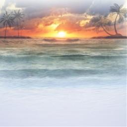 ocean sunset fun remixme bored tree trees palmtrees freetoedit