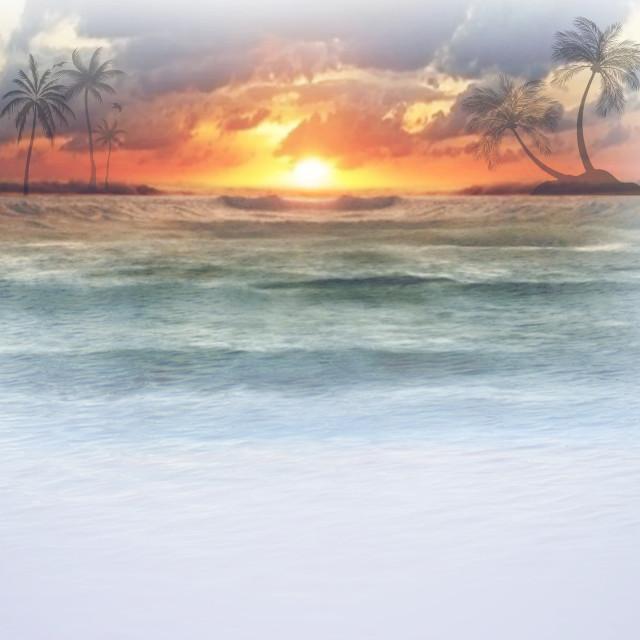 #ocean #sunset #fun #remixme #bored #tree #trees #palmtrees