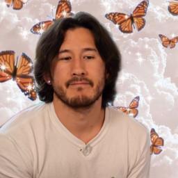 markiplier butterflies freetoedit