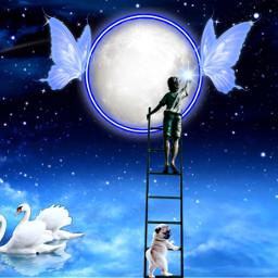 neonbutterflycirclestickerremixchallenge moonlightandbutterflies butterflies moon stars shootingstar swans cutedogs youngboy ladder srcneonbutterflycircle neonbutterflycircle freetoedit