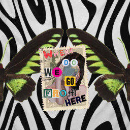 freetoedit trippy collage collageart
