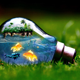 goldenfishstickerremixchallenge underwaterworld goldfish scubadiver island lightbulb grass water srcgoldenfish goldenfish freetoedit