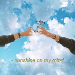 sunshine syn butterfly clouds blue summer ircreachinghands reachinghands freetoedit