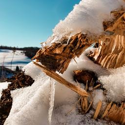 winter winterwonderland sun photography picoftheday sky ice freetoedit