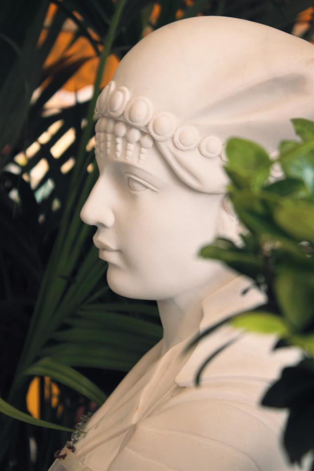 #garden #sculpture #statue #womanfigure #profile #delicatebeauty #classicalart #stonemade #stonecarved #pcstonemade #indoorgarden #plants #indoorphotography                                                                                           #freetoedit