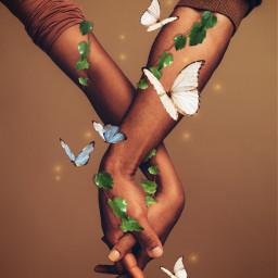 nature love hand butterfly vine ivy 蝶々 蔦 蔓 手 picsart picsartjapan freetoedit