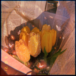 makeawesome heypicsart papicks flower flowers asthetic aestheticedit aesthetics butterfly butterflies glitter beautiful orange yellow ∆ @picsart yellow