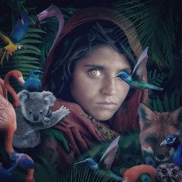 freetoedit animal girl forest surreal visual