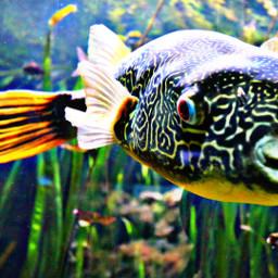 fish underwaterlove animals aquarium nature water bigfish pccolorsisee colorsisee