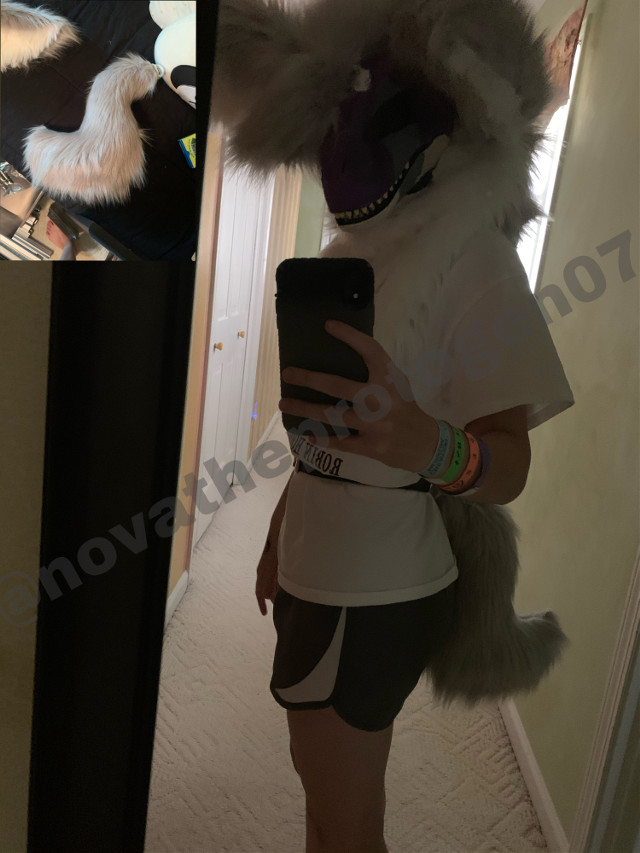 Made anastasias tail :D im super happy with how it turned out, being that this was my first fursuit tail lmao- anastasia is my baby i love her sm- hoping to make some better paws and feetpaws soon, but for now she has storebaught ones (they are pretty good tho-)     #fursuit #furry #furries #fursona #furryfandom #furries #furrie #fursona #dinomask
