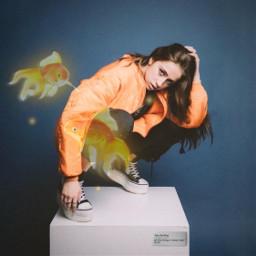 srcgoldenfish goldenfish freetoedit