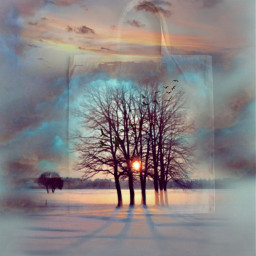 landscape sky sunset clods trees bag freetoedit ircdesignthetotebag designthetotebag