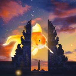 remixed srcgoldenfish goldenfish