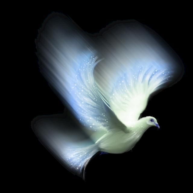 #ftestickers #bird #flying  #aesthetic #blue
