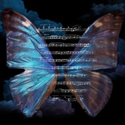 ecbutterflywings butterflywings freetoedit
