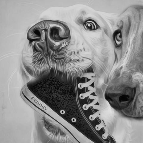 #dog,#freetoedit,#ircstepbystep,#stepbystep