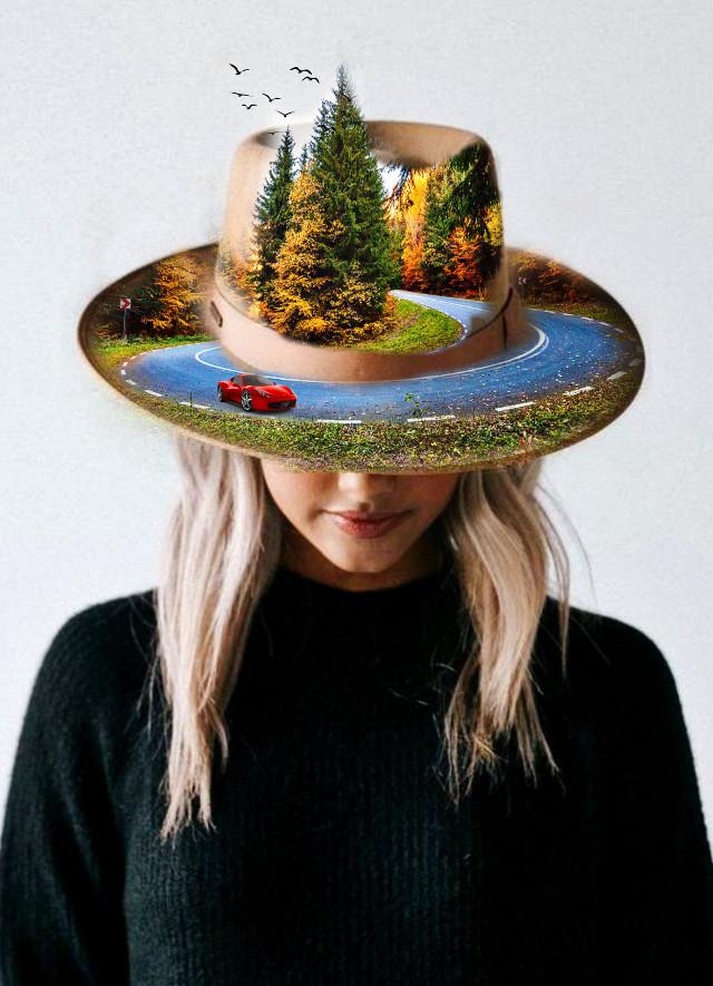 #hittingtheroad #mountains #curvedroad #evergreentrees #redcar #birdsflying #womansportrait #fedorahat ✨🚘🗺🏔🌲👒✨