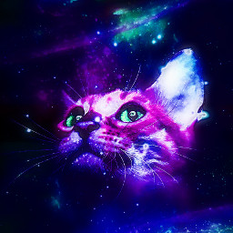space galaxy galactic universe stars astronomical dimensions discovery makeawesome colors bright dark glow cat animal fascinating edit myedit photomanipulation picsart heypicsart madewithpicsart papicks freetoedit