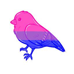 bird bi bisexualdrawing bisexualedit drawing edit cute lgbtq pridemonth freetoedit