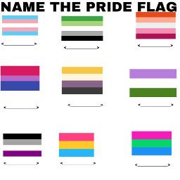 nametheflag pridemonth prideflag icebreakers freetoedit