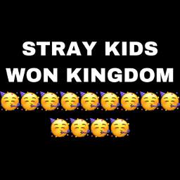 straykids kingdom
