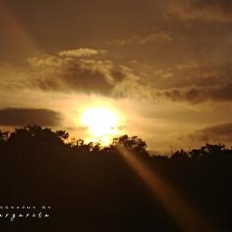 golden sun nature photographybymargarita brillaperla pcsunnyweather sunnyweather