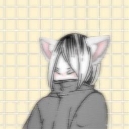 kenmakozume kozumekenma kenma kozume haikyuu haikyu anime haikyuuicon animeicon icon animepfp haikyuupfp kenmaicon freetoedit