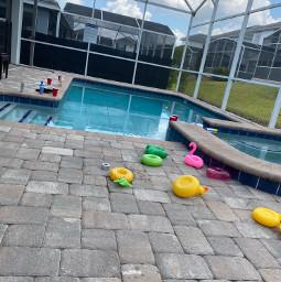 freetoedit pool party drunk pcsunnyweather sunnyweather