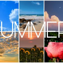 summer voteforme ccsummermoodboard summermoodboard freetoedit